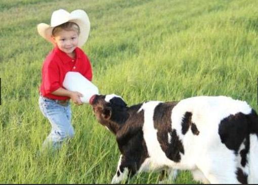 Dakin Dairy Farm