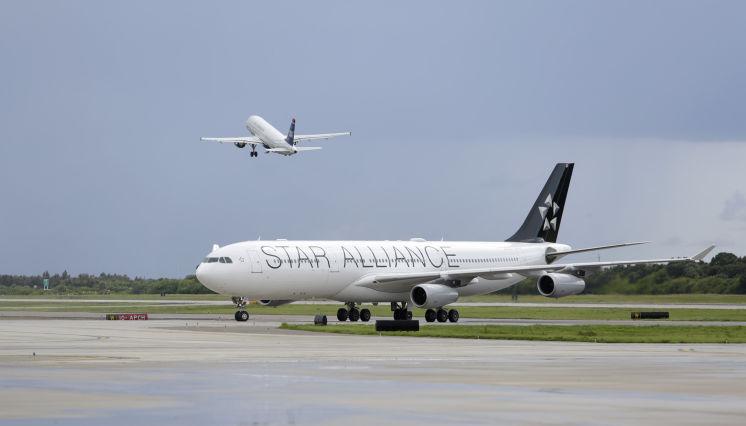 Lufthansa Tampa – Frankfurt fliegt trotz Streik